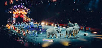 Circus-Post-2-image
